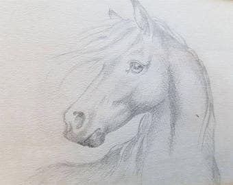 Vintage Horse Pencil Drawing in Frame