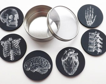 Anatomy Coaster future doctor male nurse medical student physician assistant gifts stocking stuffer black and white decor gothic fathers day