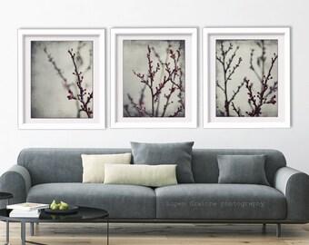 Botanical photography prints set gray burgundy nature wall art living room art - Plum Branches Set of Three