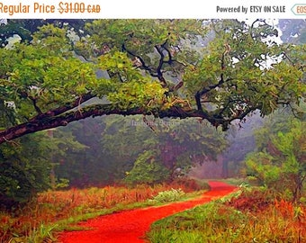 SALE-35% OFF, Painted Photograph, 7x5 fine art giclee print, Title: Follow the red brick road