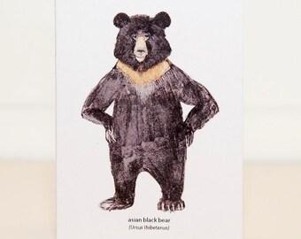Asain Black Bear Mini Card