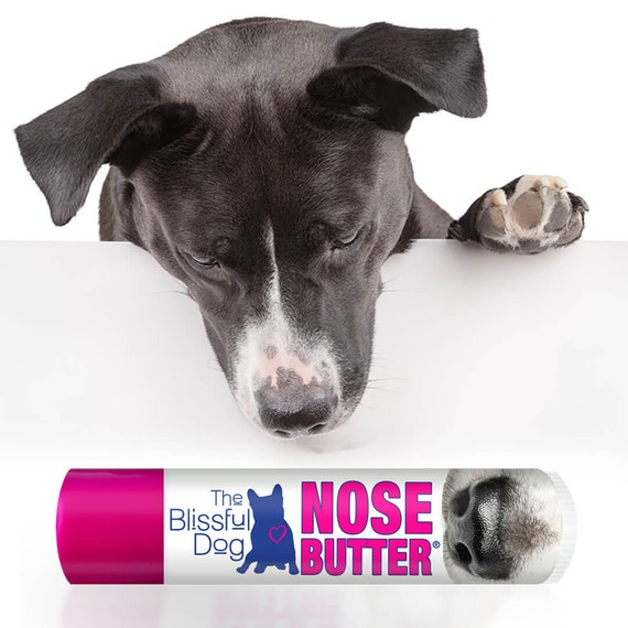 The ORIGINAL Dog NOSE BUTTER® Handcrafted Balm for Dry Dog Noses Choice: .15 oz Tube or a 3-Pack of .15 oz Tubes Just A Nose Label