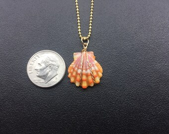 0208 Sunrise Shells Hawaii Necklace With 18 inch 14kt Gold Filled Chain