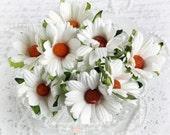 White Mulberry  Chrysanthemums Set of 10 for Scrapbooking, Cardmaking, Altered Art, Wedding, Mini Album