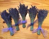 Set of 6: Summer's Brightest Cutest Dried Lavender Bouquets, Bundle, Boutonniere, Bumper crop discount!