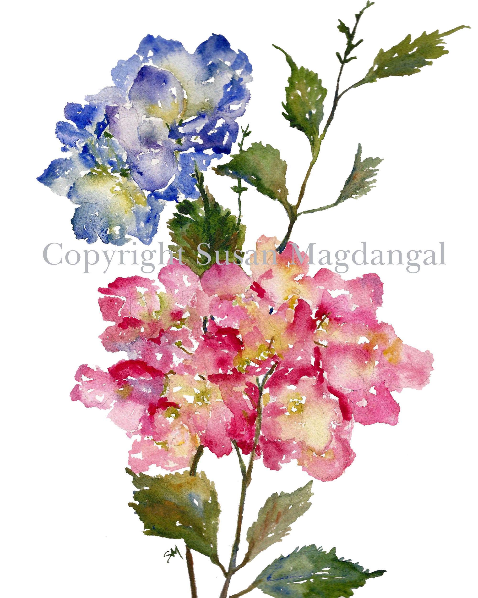 Hydrangea Watercolor Fine Art Print Watercolor Flowers