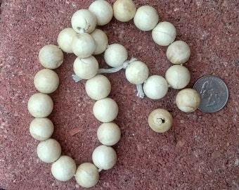 Naga Shell Beads 15mm
