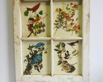 Vintage 4 pane window Birds Audubon prints architectural salvage chippy white wood frame Shabby Cottage French Country