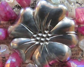 A Silver Blossom