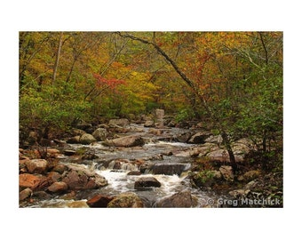 "Fine Art Color Landscape Photography of Hawn State Park in Missouri - ""Autumn Colors on Pickle Creek 2"""
