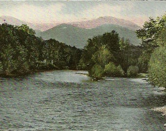 Shelburne New Hampshire Antique Postcard Up the Androscoggin River from Leadmine Bridge 1905