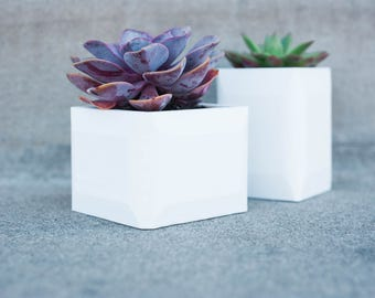 The Duo - Remy & Anton - Small Succulent / Plant Planters