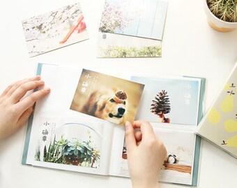 Insert Page Album Insert Photo Album Photos Scrapbook Album