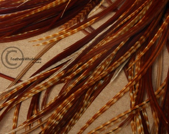"""Brown Hair Feathers Natural Dark Barred Ginger Rooster Feather Hair Extension DIY Kit Auburn Red Real Bird Feathers, 12 Pack 9-11"""""""