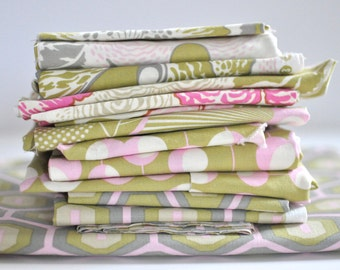 Amy Butler - Midwest Modern 2 - Fabric Pack