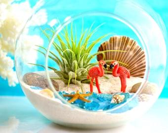 Flamingo Beach Terrarium Kit ~ Glass Hanging or Sitting Terrarium with Air Plant ~ 2 Pink Flamingos ~ Mini Bay Starfish ~ Beach Decor ~ Gift