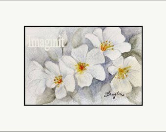 Original Miniature Painting in Watercolor - White Dogwood