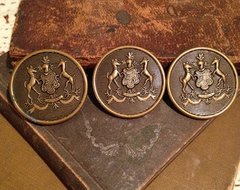 Lot of Large Brass Shank Buttons
