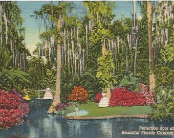 Bright Crimson Red Flowers and Moss Covered Palm Trees at the Reflection Pool at Beautiful Florida Cypress Gardens Vintage Linen Postcard