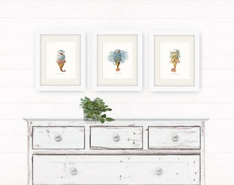 Coastal Decor Art - Hydra Natural History Giclee Art Print No. 1 8x10