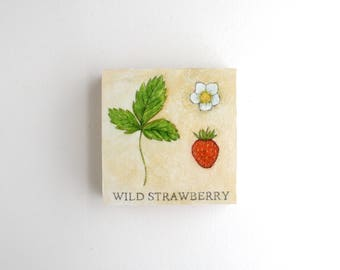 Wild Strawberry Mixed Media Painting - 3 x 3