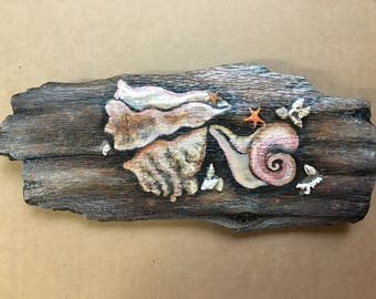 Shell painting on driftwood