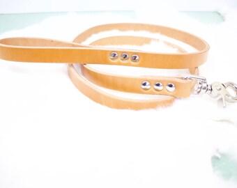 Leather Dog Leash - 4 ft Hermann Oak Bridle leather