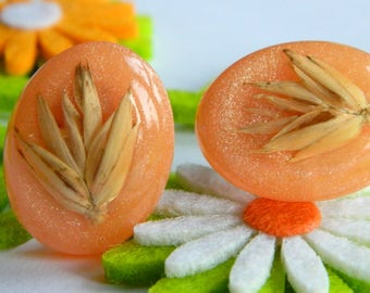 Retro 1960's Orange & Glitter Lucite Clip On Earrings w/ Embedded Dried Plant- Peach Coloured Garden Wheat Grass Spring Fall