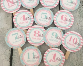 SHABBY CHIC BICYCLE Vintage 1st Birthday Photo Clips Banner Newborn - 12 months - Pink Aqua - Party Packs Available