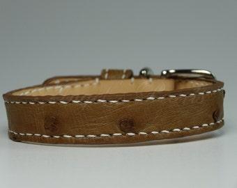 Dog Collar Brown Genuine Ostrich Leather - Jamie - Hand Sewn - Neck 22 to 28 cm