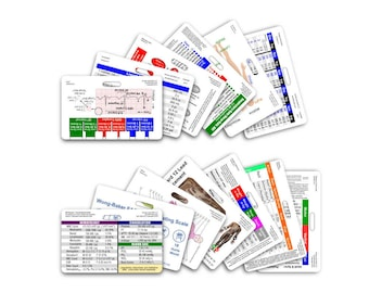Complete Nurse Horizontal Badge Card Set - 13 Cards - for ID Badge Clip Strap Reel RN Nursing lpn cna aprn