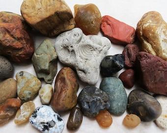 Oregon Beach Finds Ocean Tumbled Agate Carnelian Jasper Fossil Mixed Rock lot Sea Agates