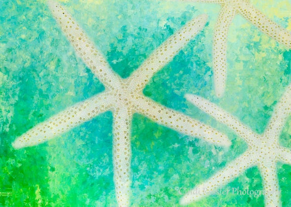 Starfish, Abstract Art, Digital Art, Photography, Nautical, Beach, Cottage Decor, Fine Art Photography, Beach Decor