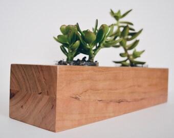 Double Succulent Planter