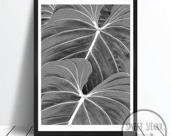Palm Leaf Print, Palm Print, Palm Wall Print, Scandinavian art, wall art, monochrome print, wall decor, Palm Leaf wall art - 8x10'