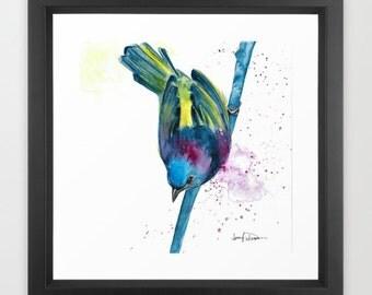 Birdie Watercolor Framed Art Print Art By Jen Duran