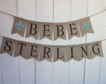 French Baby Shower Banner - Bebe Shower Decor - Custom Name Shower Bunting - Personalized French Style Baby Shower Garland - Fleur de Lis