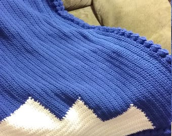 Crochet Afghan - Blue and White