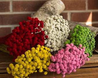 Dried Flowers, Button Flowers, Pink Button Flowers, White Button Flowers, Wedding Flowers, Real Button Flowers, Preserved Flowers. Wedding