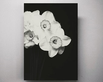 Still Life Flwers Art Minimalist Black and White Fine Art Photography Daffodils Picture Minimalist Nature Print Large Living Wall Art Decor