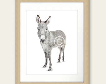 Im All Ears Donkey Drawing Print Artwork Picture