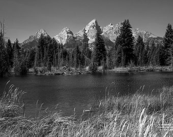 Grand Teton Print, Black-and-White Art, Teton Photography, Wall Art Mountains, Teton Home Decor, Photo of Grand Teton, Nature Photography