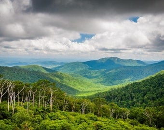 View of the Blue Ridge Mountains from Skyline Drive, in Shenandoah National Park, Virginia.   Photo Print, Stretched Canvas, or Metal Print.