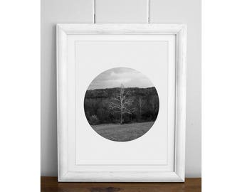 Black And White Prints, Black and White Photography, B&W, Monochrome, Circle Prints, Nature, Trees, Forest, Digital Downloads