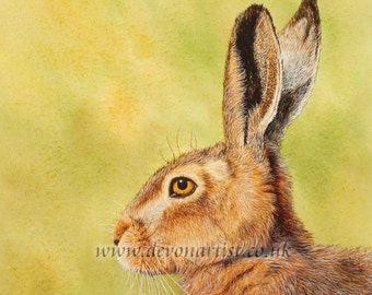 Hare Original Watercolour Painting, Animal Painting, Brown Hare, Spring Hare, Wildlife Art, Illustration
