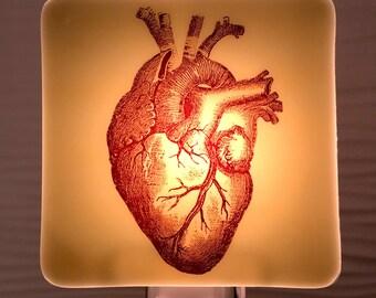 Anatomical Heart Night Light Fused Glass