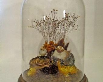 Vintage Glass Cloche, Large Glass Dome, Vintage Faux 1970s Taxidermy Birds, Sunshine Company Glass Cloche Terrarium