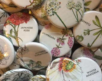 Botanical Magnets