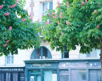 Paris Photograph, Place Dauphine Paris, Paris Spring, Paris Blooming Trees, Paris Wall Art, April in Paris, French Decor