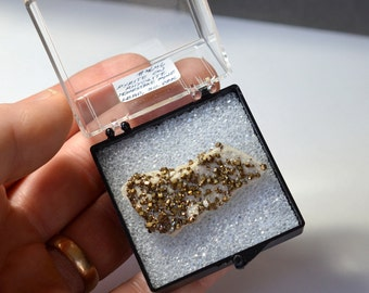 RARE!  Incredible Pyrite Crystals on Rhyolite Matrix Miniature, from South Dakota  -  Ex-Brandt Collection